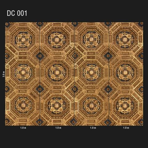 DC 001