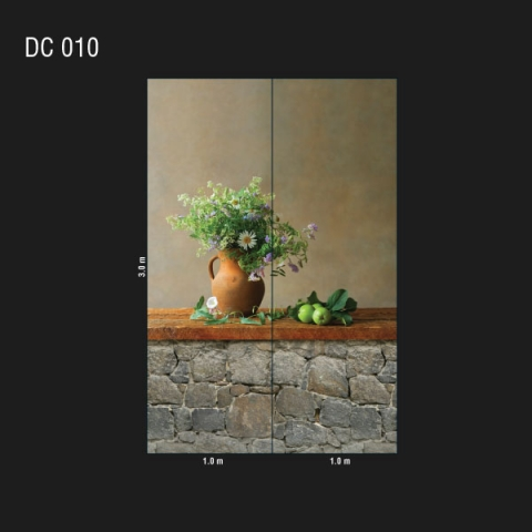 DC 010