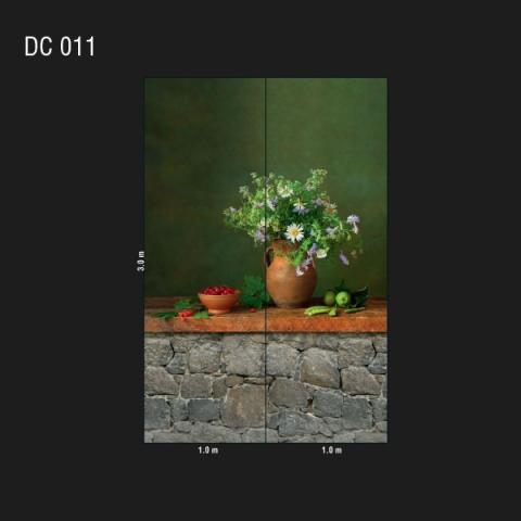 DC 011