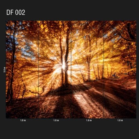 DF 002