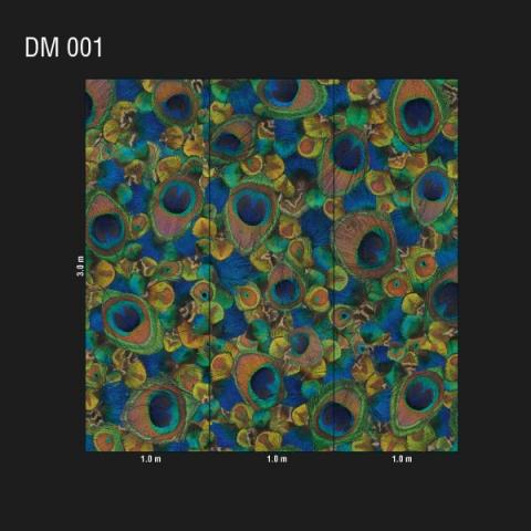 DM 001