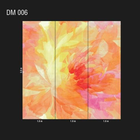 DM 006