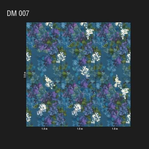 DM 007