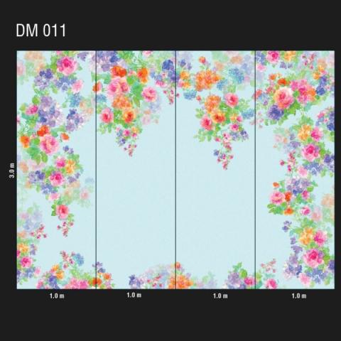 DM 011
