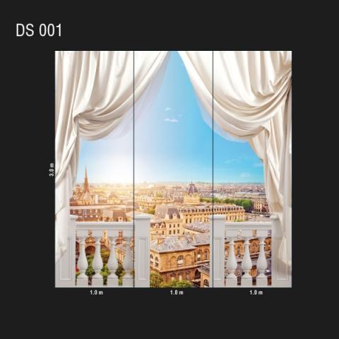 DS 001