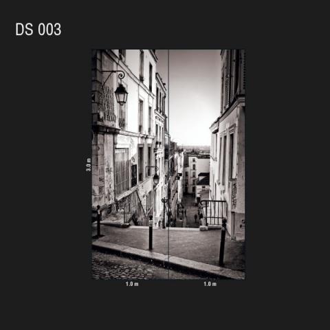 DS 003
