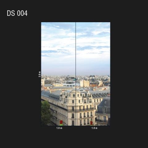 DS 004