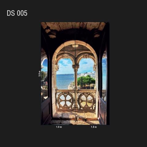 DS 005