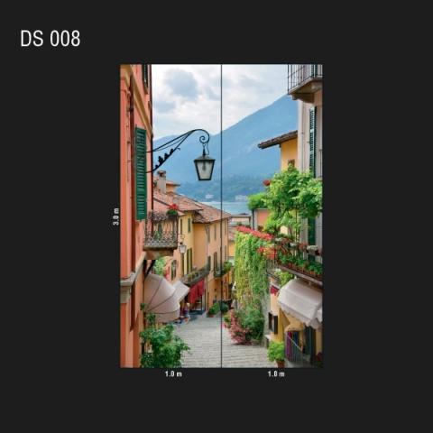 DS 008