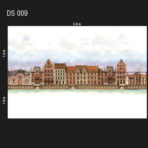 DS 009