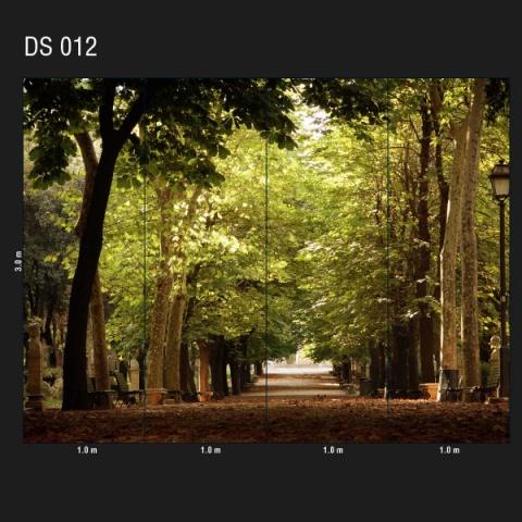 DS 012