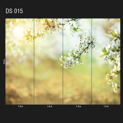 DS 015