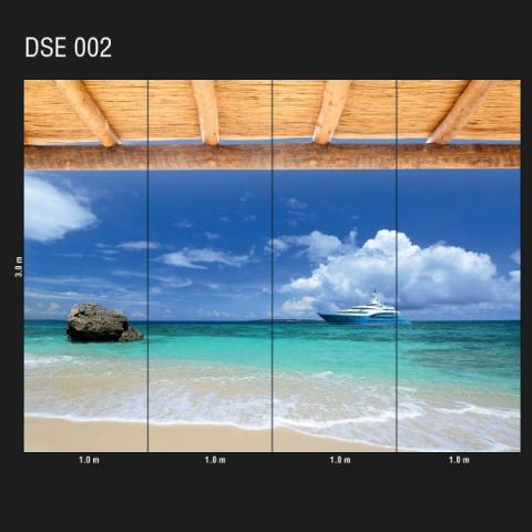 DSE 002