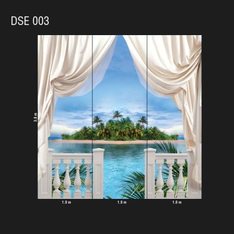 DSE 003