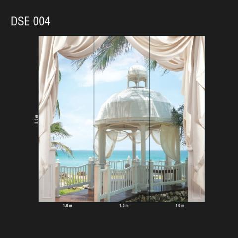 DSE 004