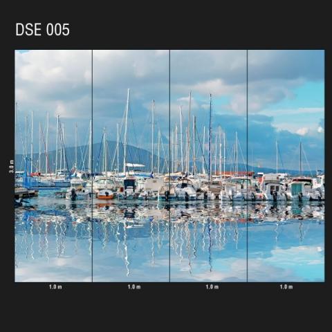 DSE 005