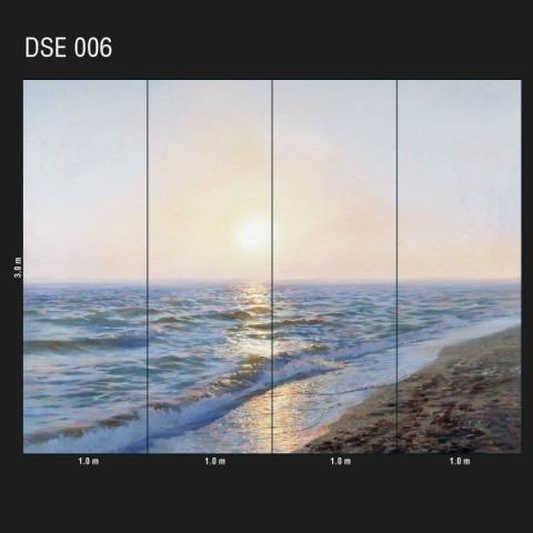 DSE 006