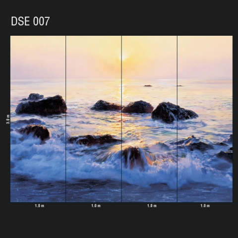 DSE 007